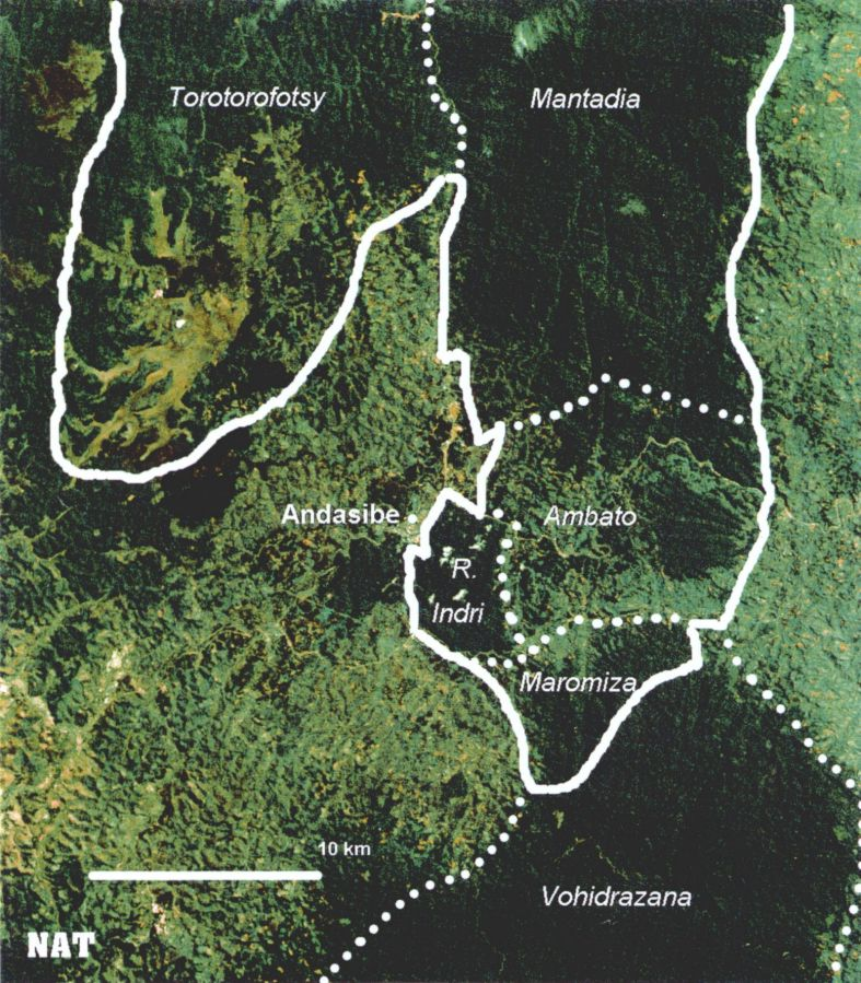 map of madagascar rainforest. Map rainforest 2000